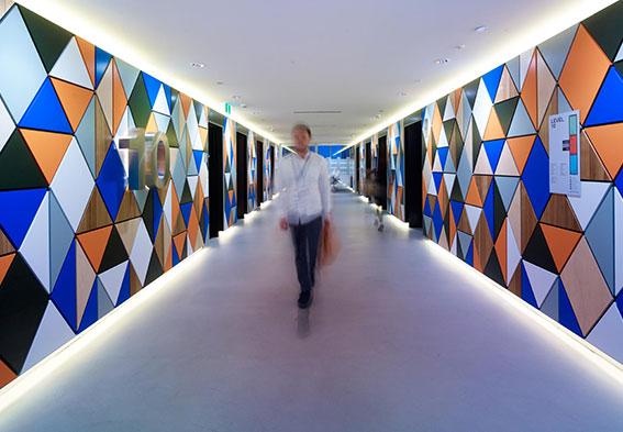 Commercial Pandomo Floor Gallery